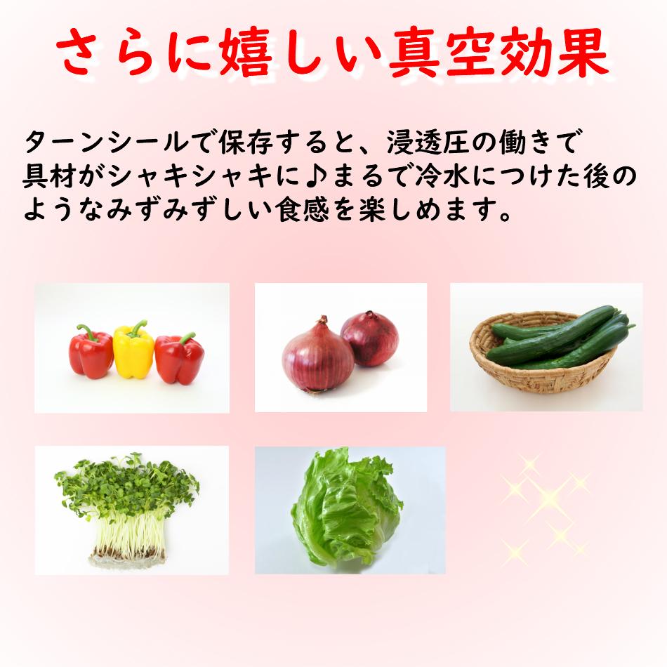真空保存容器ターンシール(ターンエヌシール)ならサラダがさらに美味しい
