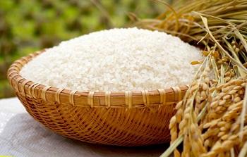 米は真空米びつセビアで真空保存