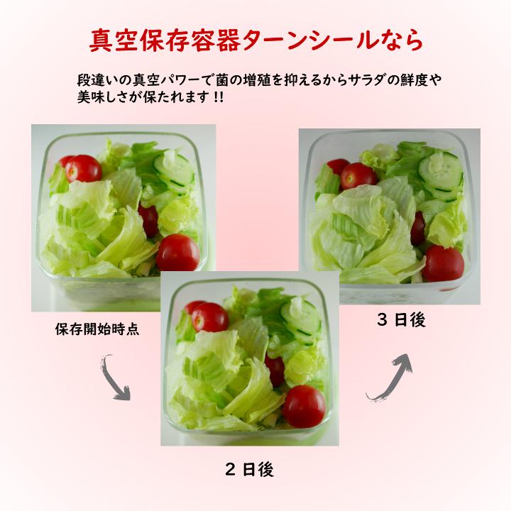 真空保存容器ターンシール(ターンエヌシール)でサラダを真空保存