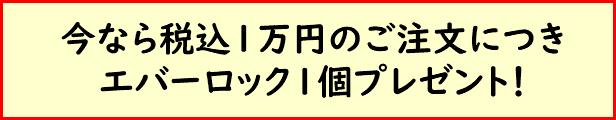訳アリ品プレゼントキャンペーン_ANKOMNショップ
