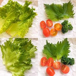 ANKOMN_真空保存容器セビアで野菜を真空保存1